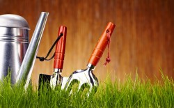15149641 - autumn garden tools background